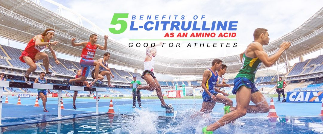 5 Benefits of L-Citrulline as an Amino Acid | Whole Family Products