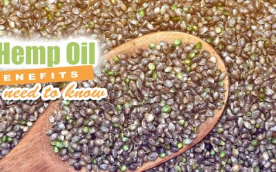 6 Hemp Oil Benefits You Need To Know