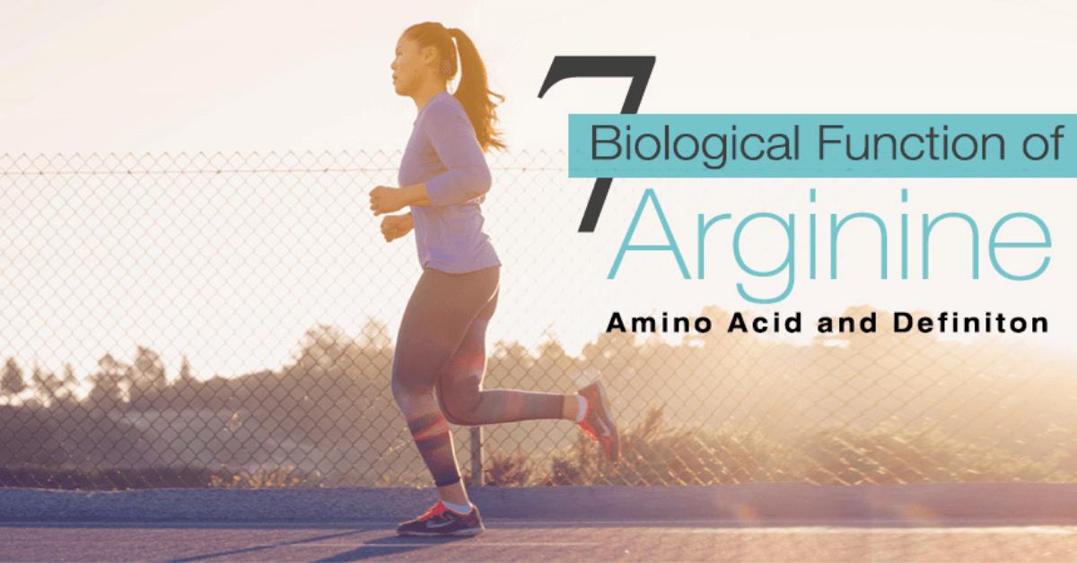 7 Biological Function of Arginine Amino Acid and Definition