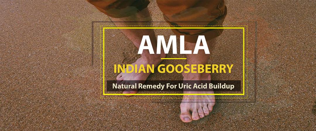 Amla Indian Gooseberry Natural Remedy Uric Acid Buildup