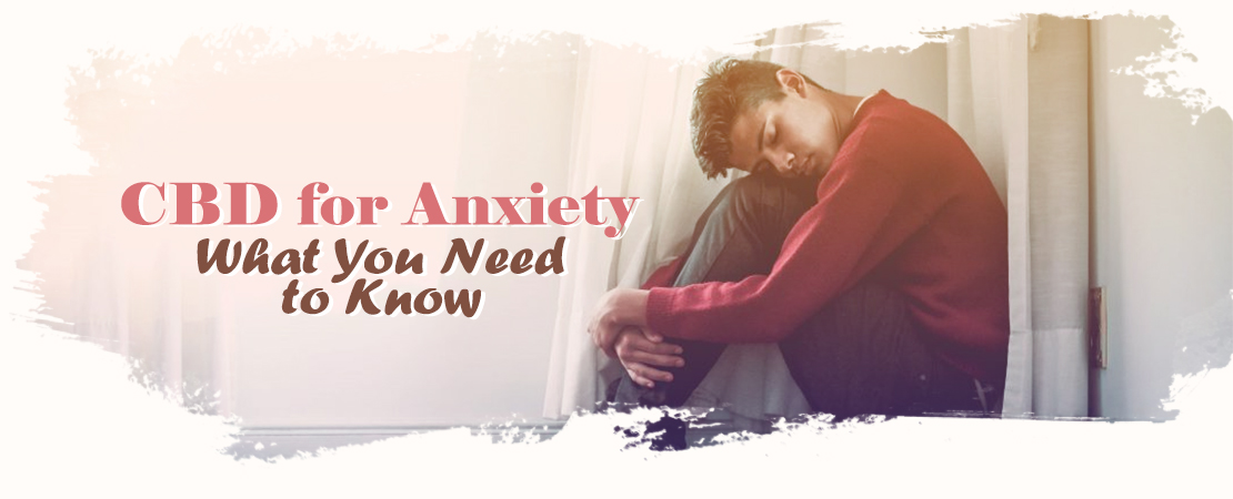 CBD for Anxiety You Need To Know | Whole Family Products