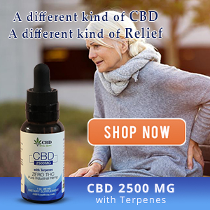 Best Cbd Oil with Terpenes: Relieve Pain, Stress and Ease Anxiety