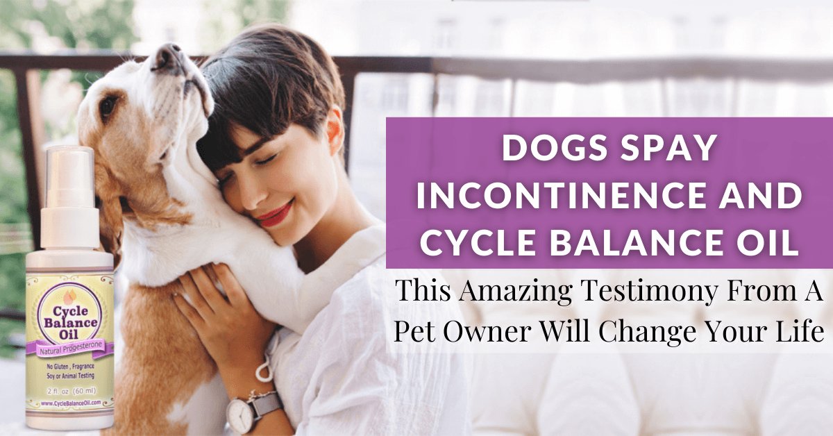 Dogs Spay Incontinence and Cycle Balance Oil This Amazing Testimony From A Pet Owner Will Change Your Life1200x628