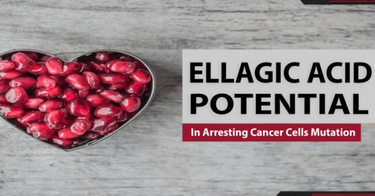 Ellagic Acid Potential In Arresting Cancer Cells Mutation