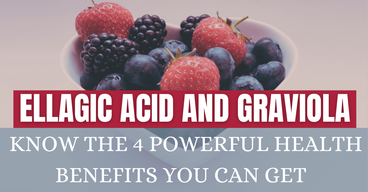 Ellagic Acid and Graviola: Know the 4 Powerful Health Benefits You Can Get