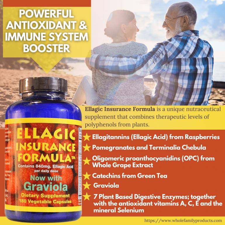 Ellagic Insurance Formula Infographics