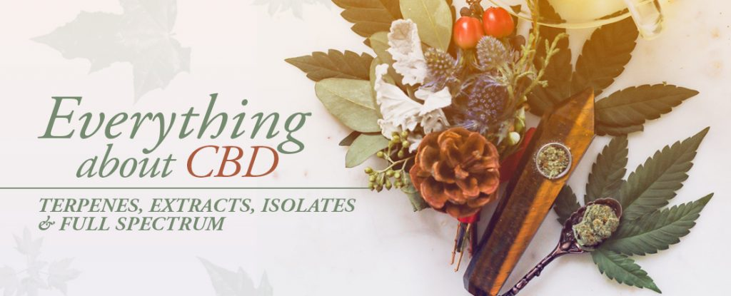 Everything About CBD | Whole Family Products