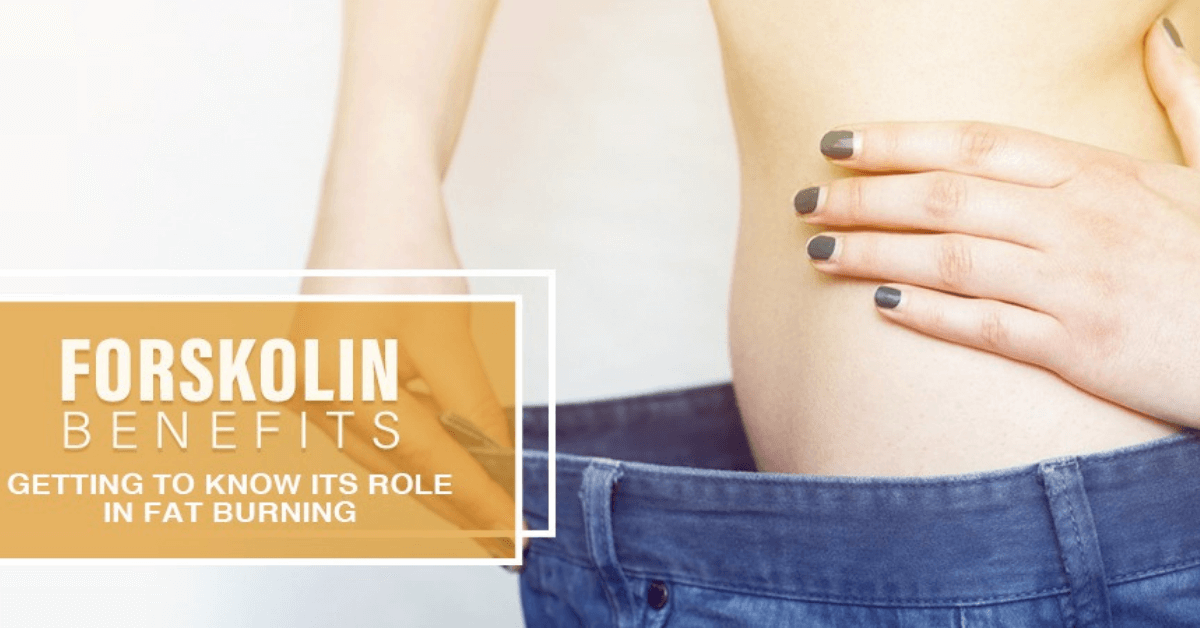 Forskolin Benefits: Getting To Know Its Role In Fat Burning