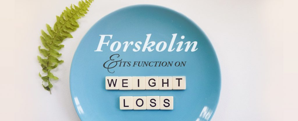 Forskolin and Its Function on Weight Loss | Whole Family Products