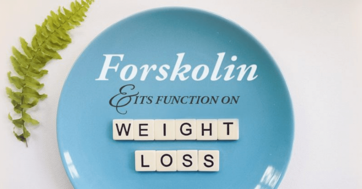 Forskolin and Its Function on Weight Loss