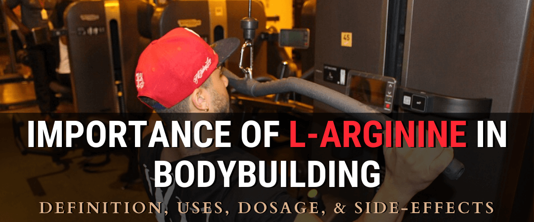Importance of L-Arginine in Bodybuilding: Definition, Uses, Dosage, & Side-effects