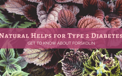 Natural Helps for Type 2 Diabetes: Get to Know About Forskolin