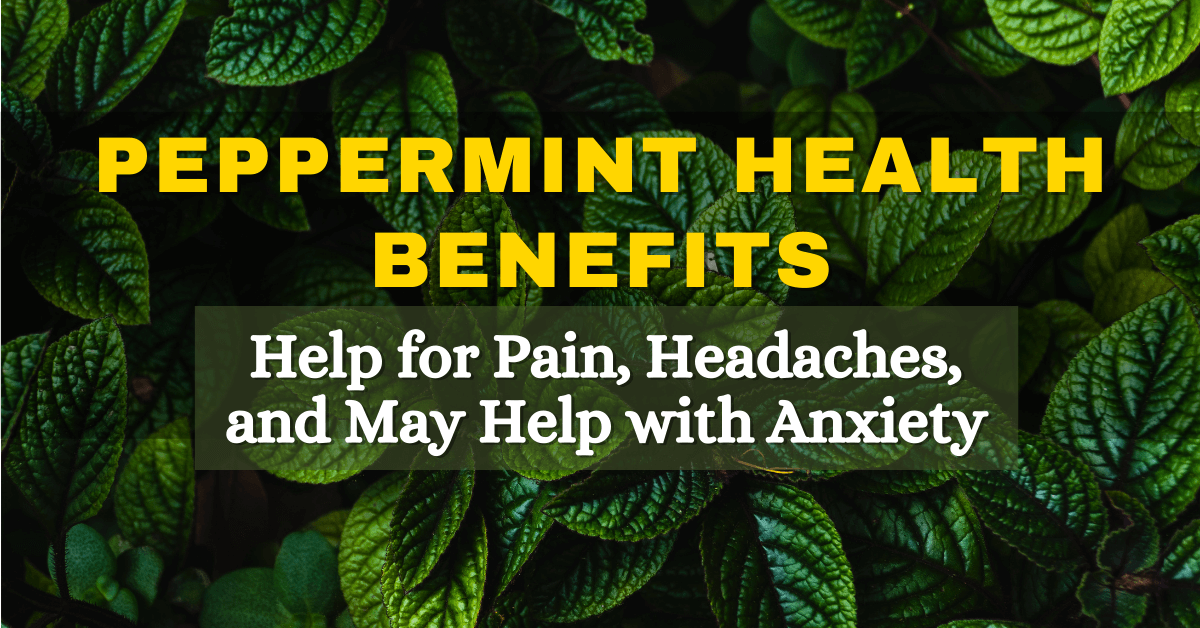 Peppermint Health Benefits: Help for Pain, Headaches and May Help with Anxiety
