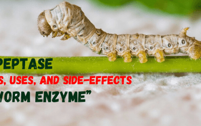"""Serrapeptase Benefits, Uses, and Side-Effects of the """"Silkworm Enzyme"""""""