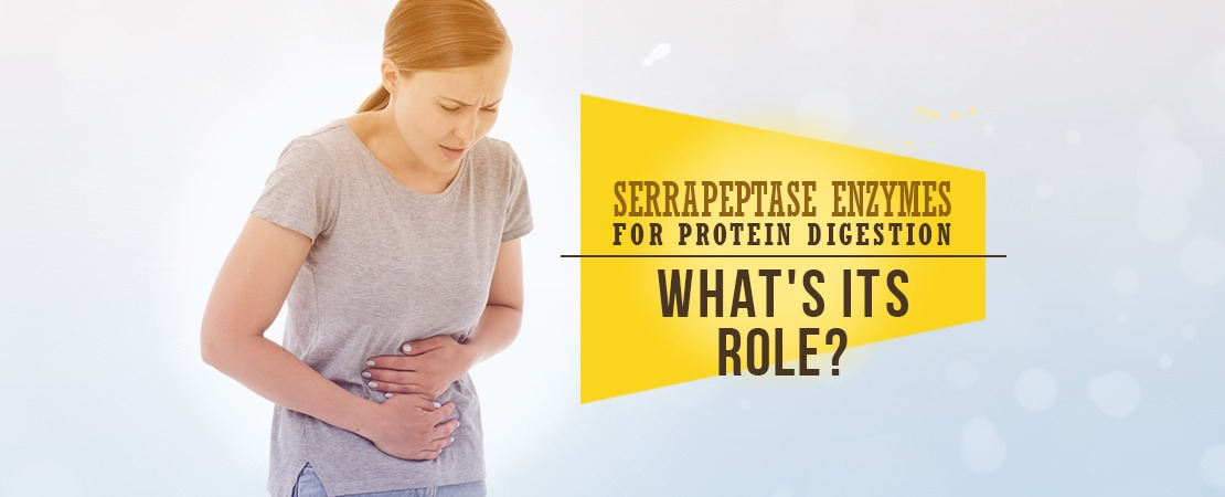 Serrapeptase Enzymes For Protein Digestion