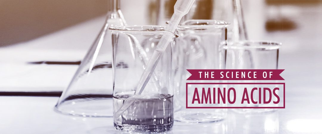 The Science of Amino Acids