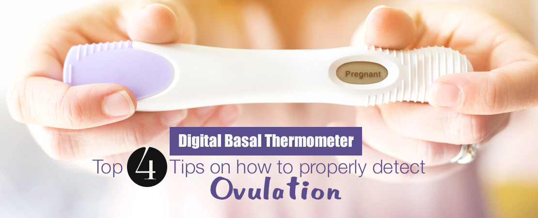 Tips on How to Properly Detect Ovulation | Whole Family Products